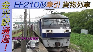 EF210形牽引貨物列車 「ハローキティはるか」停車中の山陽本線金光駅通過!