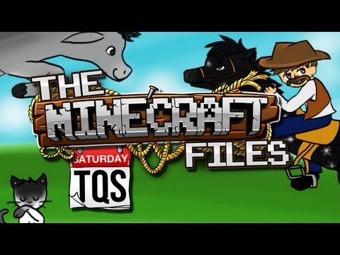 The Minecraft Files - #316 TQS - STORAGE! STORAGE! STORAGE! (HD)