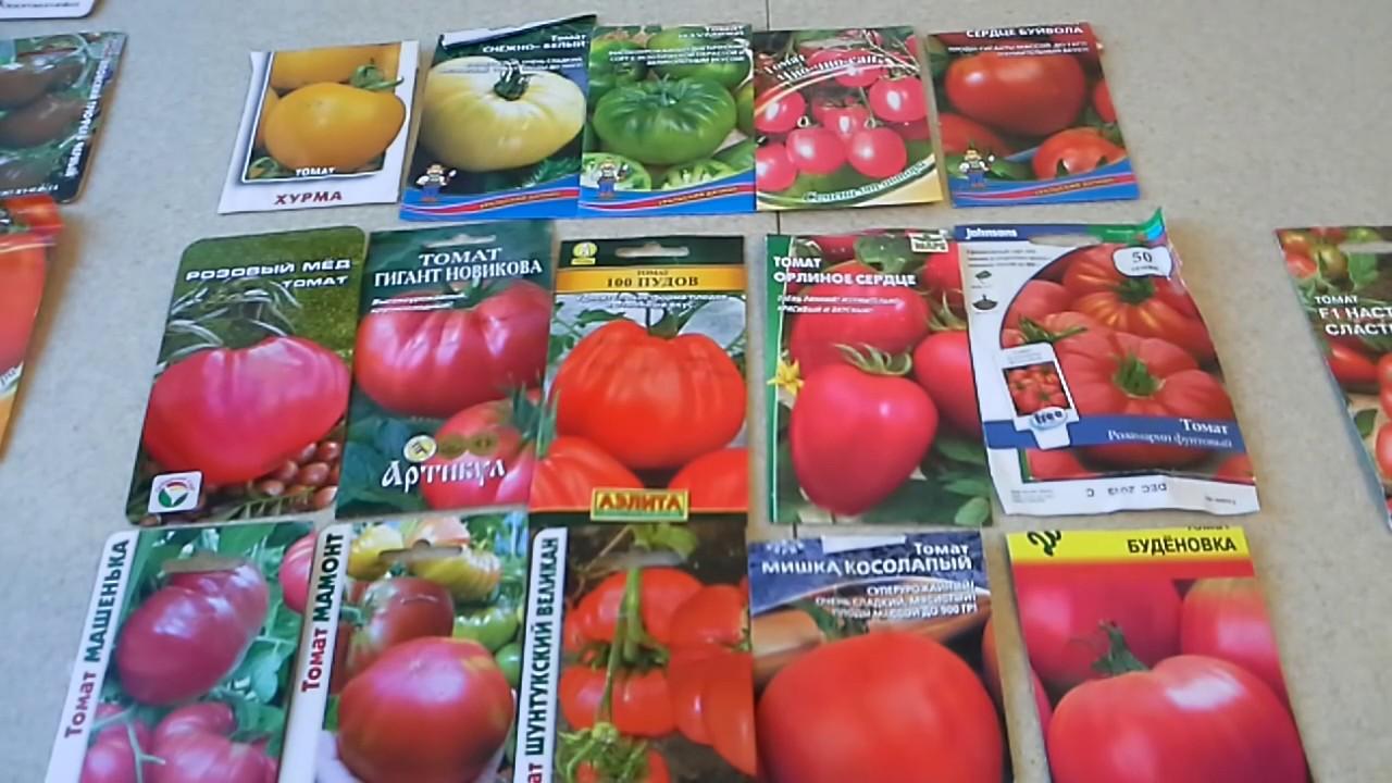 Сорта томатов, какие посажу снова, какие не буду сажать и новые