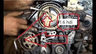 calage distribution moteur 1.6 hdi - محرك ديزل تركيب كاتينة