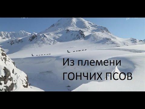 Контактная информация ПАО «Газпром»