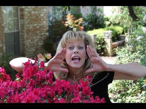 Heather Thomas Van Deren - Hey