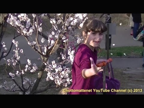 Life in Japan: Trip to Suma Park - Ume Sakura 梅桜