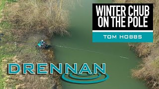 Winter Chub on the Pole | Tom Hobbs | Pole Fishing