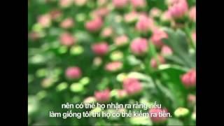 Thomas Hooft ( Dalat Hasfarm ) on VTV3