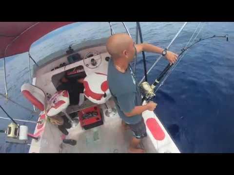100# Ahi Fishing In Hawaii