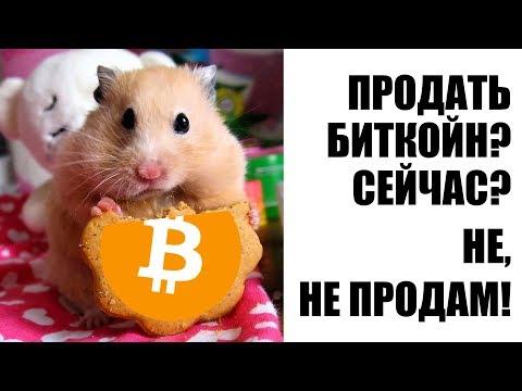 Биткойн: долгосрочные инвесторы не продают! Анализ данных блокчейн.