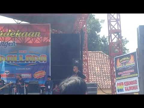 Gerry Mahessa PRIMADONA DESA Pallapa Kaliwungu 5 Agustus 2018