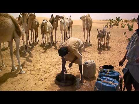 Camel Herders Mauritania 2012