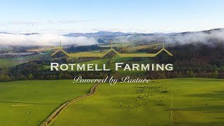 Rotmell Farming - Pure Scottish Pasture Fed Beef