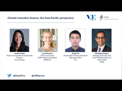 Climate transition finance the Asia Pacific perspective