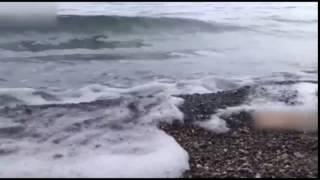 Разруха вместо жемчужины у моря: как оккупанты разрушили Крым — Гражданская оборона, вторник 20:20