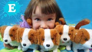 Нові вихованці Єсенія KIDS Children Розвага для дітей 5 маленьких цуценят