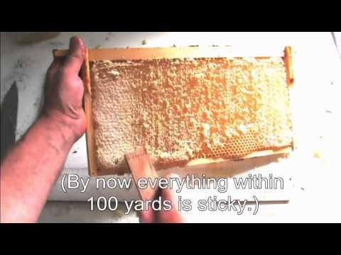 Three Simple Ways To Process Honey