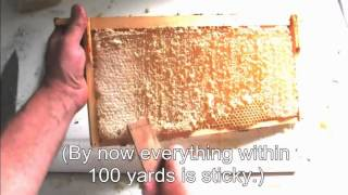 Three Simple Ways To Process Honey