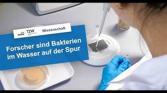 Bakterien im Trinkwasser – Forschungsprojekt zur Identifizierung von Enterokokken