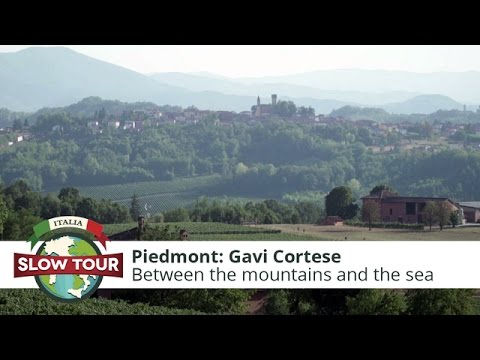 Gavi Cortese, between the mountains and the sea | Italia Slow Tour