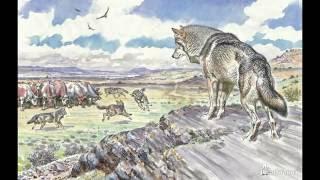 Детские книги о животных/ Л. Риис, Дж. Даррелл, Э. Сетон-Томпсон