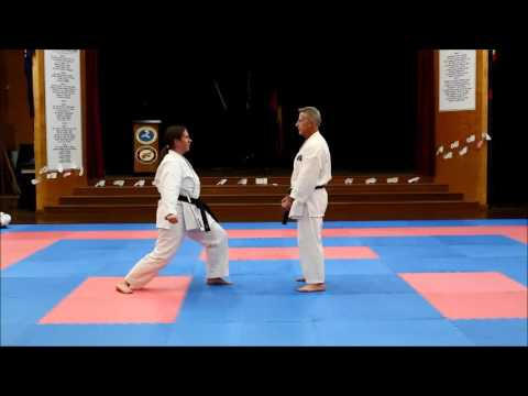 Shokotan Karate Moves By David Rush