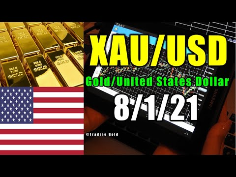 NonFarm Payrolls Forecast XAU/USD Daily Analysis by Trading Gold Strategy Today Review