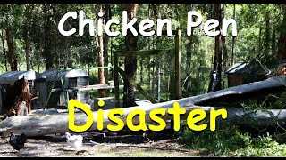 Tree Fall Disaster Through Chicken Pen