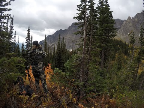 Mountain Goat Hunt Southern British Columbia Rugged Solitude