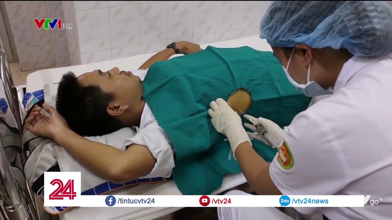 Cà gai leo – Hy vọng mới cho bệnh nhân viêm gan virus và xơ gan – Tin Tức VTV24