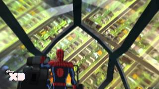 Ultimate Spiderman: Web Warriors | The Return Of The Guardians Of The Galaxy | Disney XD