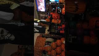 Cats kittens on Halloween funny(5)