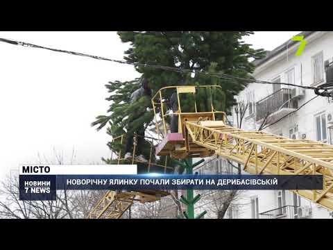 Новости 7 канал Одесса: Новорічну ялинку сьогодні почали збирати на Дерибасівській