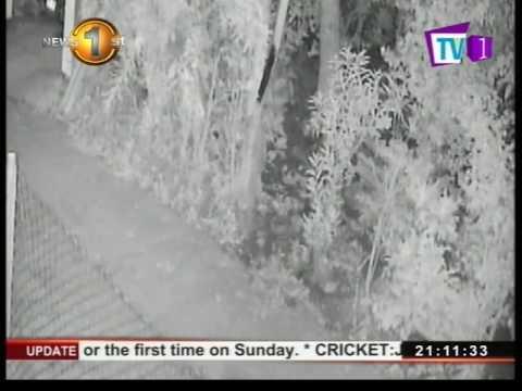 News1st: Grease yaka re-surfaces in Battaramulla following cabinet re-shuffle