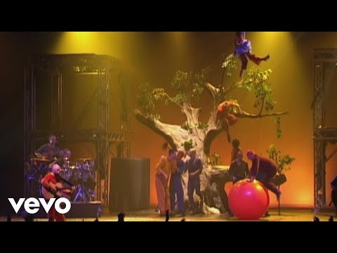 Pour Un Flirt Avec La Crise (Reggae à Coups D'cirque Au Zénith De Lille & Paris 2001)