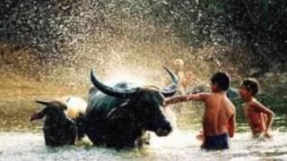 KÝ ỨC TUỔI THƠ - GIỌNG ĐỌC CAO THANH DANH