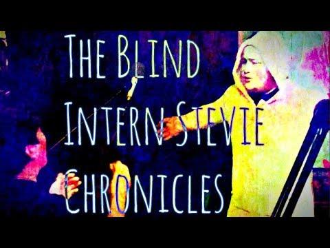 The Blind Intern Stevie Chronicles