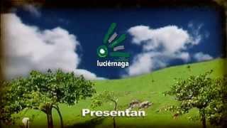 Telenovela Loma Verde. Introducción