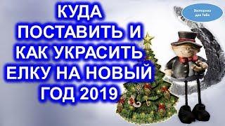видео Выбираем елку на 2019 год
