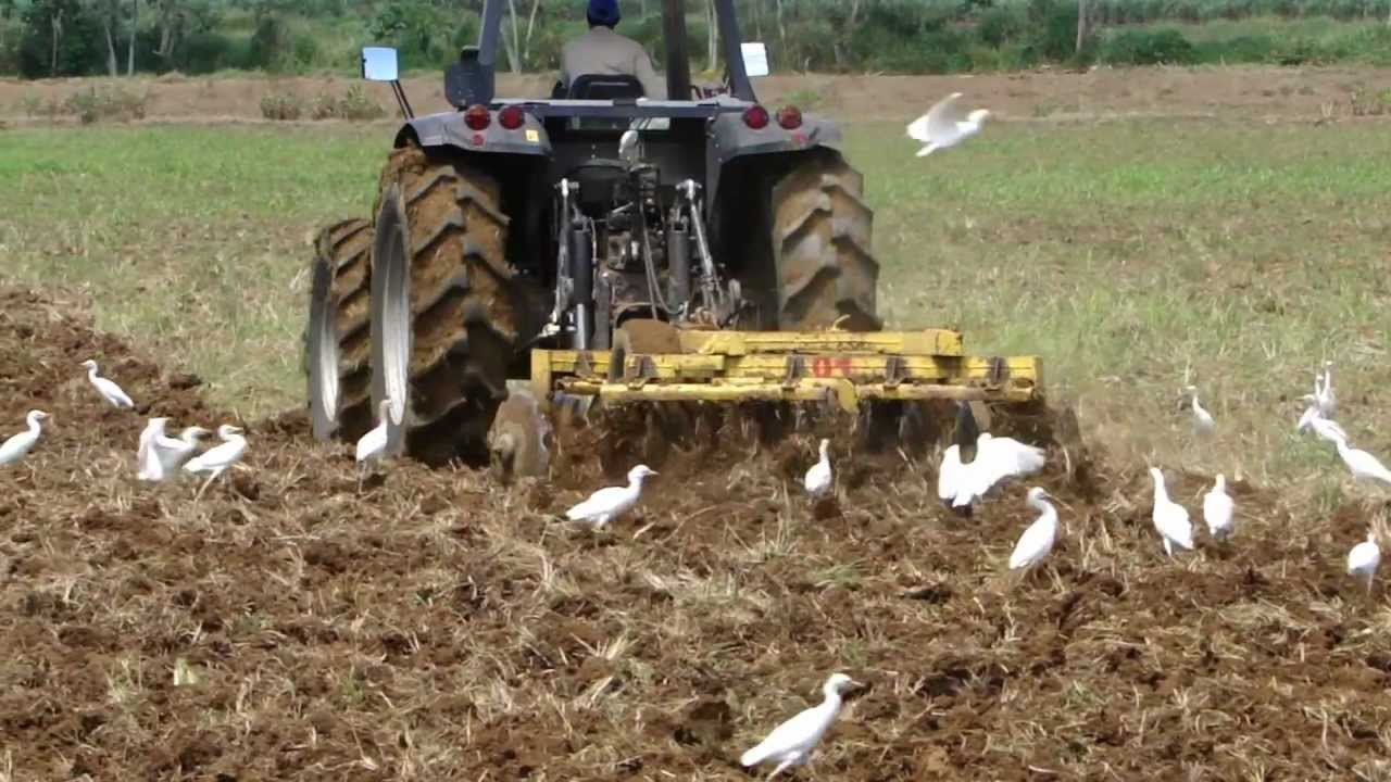 Preparaci n rastra en arroz youtube - Preparacion de la tierra para sembrar ...