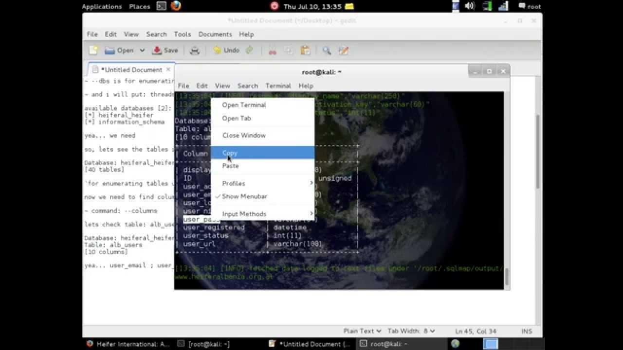 kali linux hack website pdf