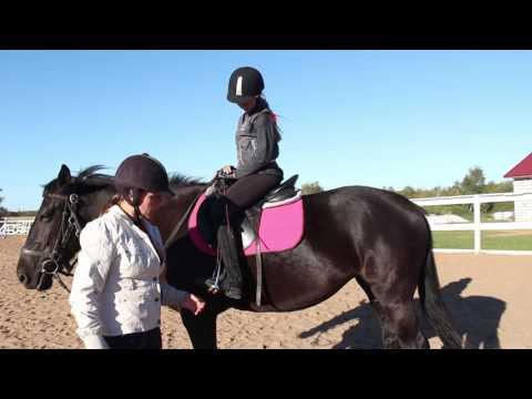 """Конный клуб  """"Western Horse"""" школа верховой езды."""