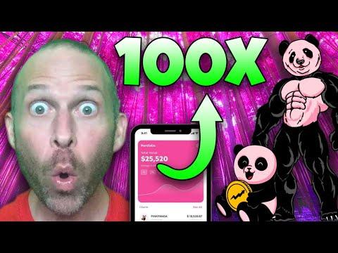 PINK PANDA COIN REVIEW!!!!! THE NEXT SAFEMOON OR SHIBA INU TOKEN!!!!!! 100X MOONSHOT CRYPTO!!!!!!