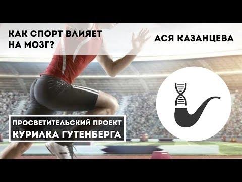 Как спорт влияет на мозг? – Ася Казанцева - Видео онлайн