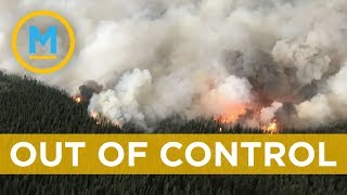 Close to 600 wildfires burning across BC | Your Morning