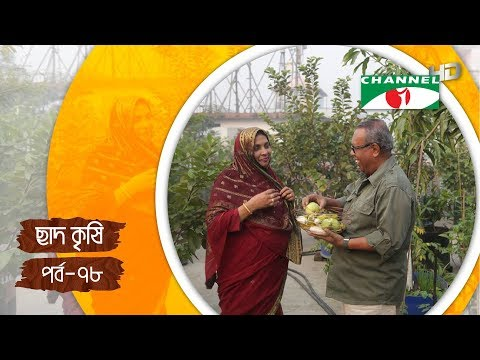Rooftop farming | EPISODE 78 | HD | Shykh Seraj | Channel i | Roof Gardening | ছাদকৃষি |