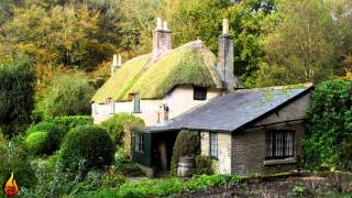 1 Hour Instrumental Folk Music | Irish Celtic Music, Acoustic & Violin Music ♫420