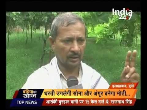 India Ki Khoj : Sweet Grapes changes the fate of farmers