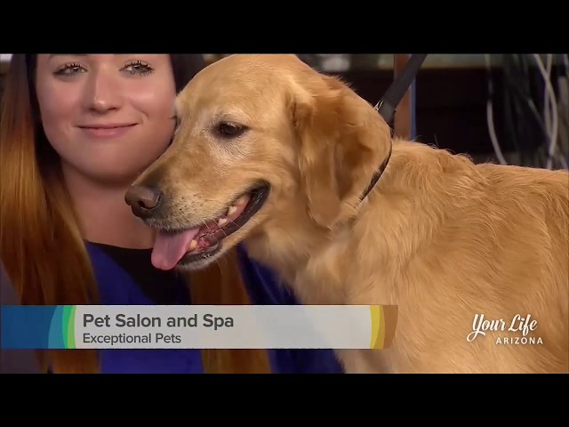 Exceptional Pets on 3TV YLAZ