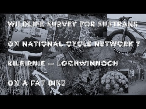 Wildlife Survey on a Fat Bike for Sustrans NCN7 #1
