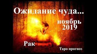 РАК. НОЯБРЬ 2019.  Ожидание чуда… Прогноз Tarot.