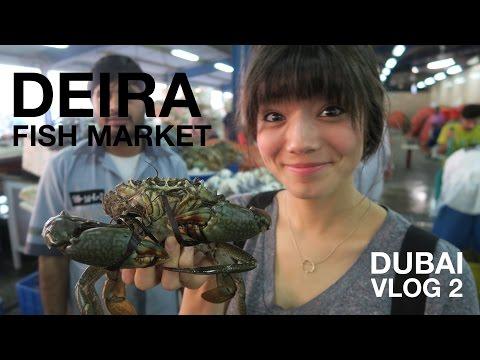 Deira Fish Market | Dubai, UAE