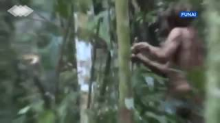Brazil releases footage of Indian alone in jungle for decades
